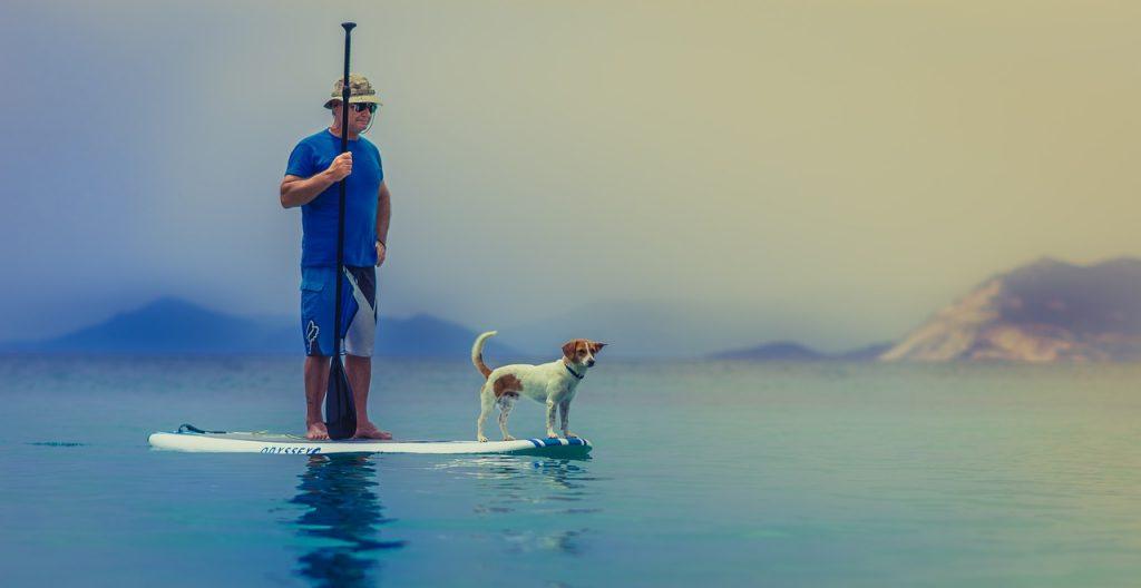 Paddle surf con perro